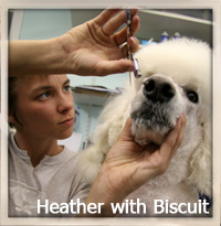 Heather with Biscuit